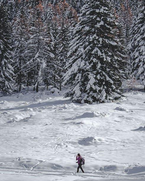 Escursioni-con-le-ciaspole-in-Val-di-Susa-11