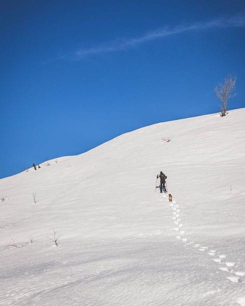 Escursioni-con-le-ciaspole-in-Val-di-Susa-2